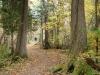 66nip-rock-trail-3