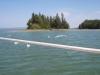 Caribou Cove5