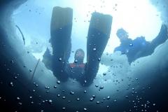 underwater-ice Dive TCD